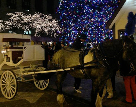 Nighttime Carriage Ride Through Lockport, IL